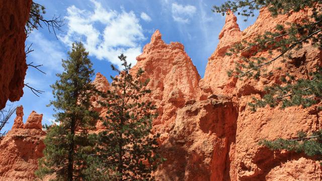 Bryce Canyon National Park Reiseführer Bild