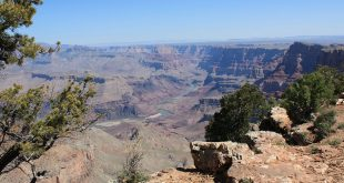 Grand Canyon Header