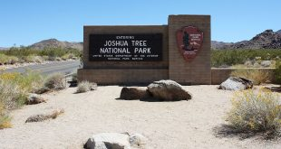 Joshua Tree National Park Eingangsschild