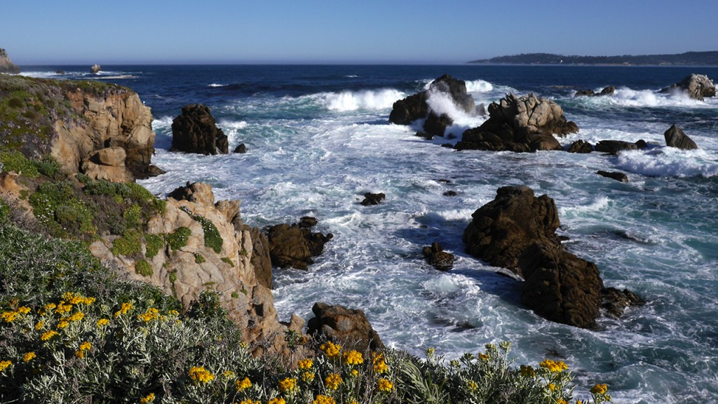 Point Lobos North Shore