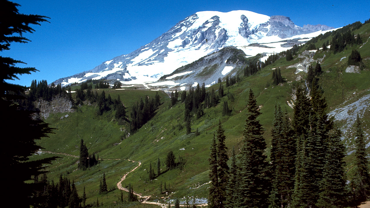 Photo of Mount Rainier National Park