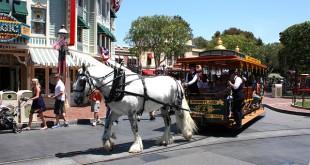 Disney Land Anaheim