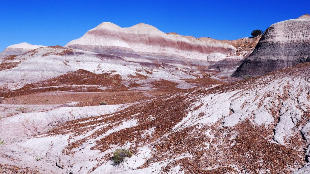 Painted Desert im Petrified Forest