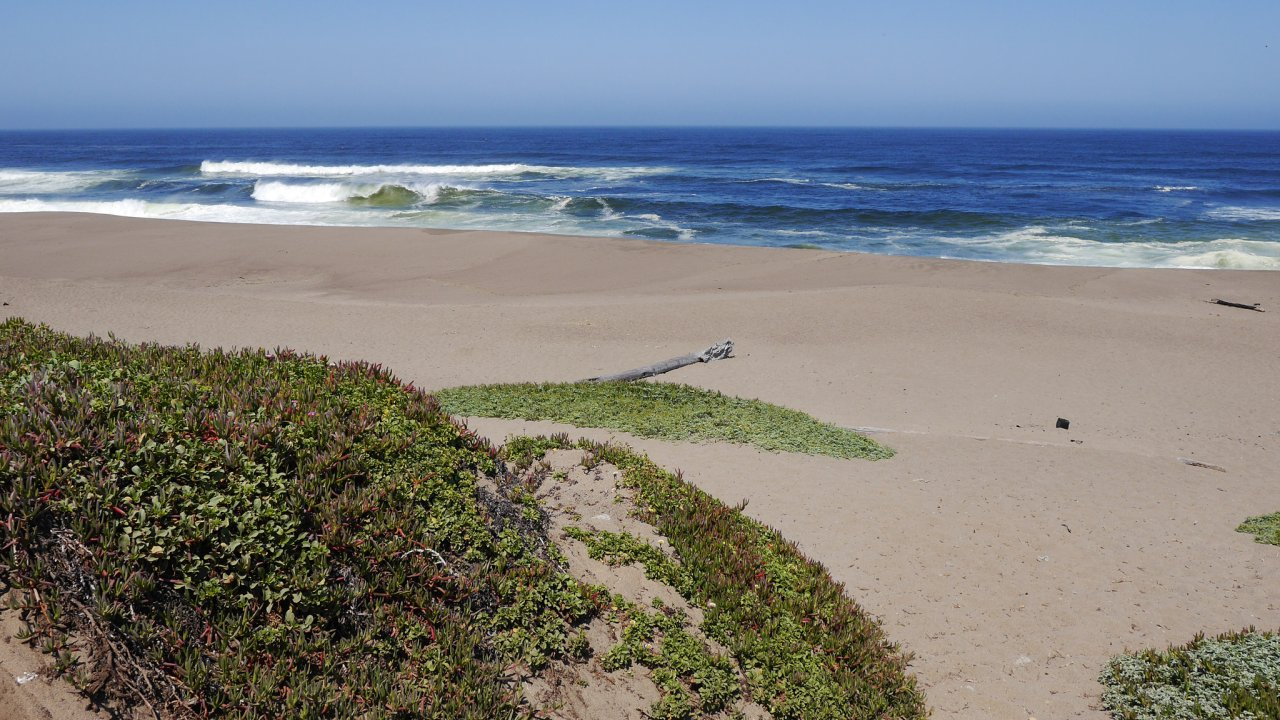 Photo of Point Reyes National Seashore