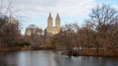 Photo of 5. Tag: Central Park und Upper West Side